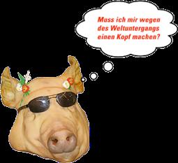 SchweinEberhardKopf
